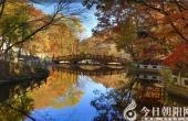 【今日朝阳网 摄影作品欣赏】丹东凤凰山秋色(二)