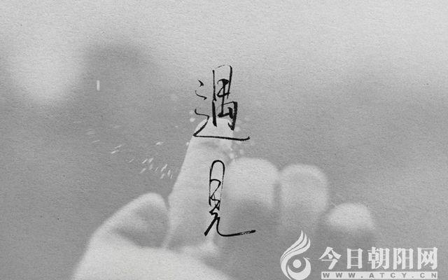 """【今日朝阳网】暖心的遇见(张凤伟)"""""""