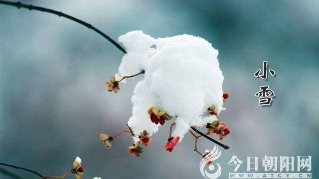 """【今日朝阳网】小雪(袁海胜)"""""""