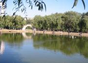 江河万里海湖浑——南运河(陈玉民)