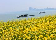 江河万里海湖浑——巢湖(陈玉民)