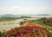 江河万里海湖浑——升金湖(陈玉民)