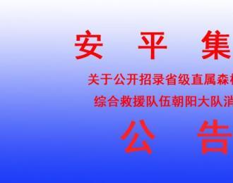 安平集团关于公开招录省级直属森林消防综合救援队伍龙8娱乐手机版大队消防员的公告