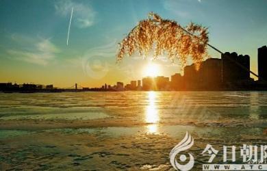 【龙8娱乐手机版_龙8娱乐首页_龙8娱乐登录】冰河芦影(徐志敏)