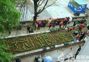 朝阳柏山社区组织党员绿化家园(王振勇)